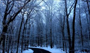 dark_road_b